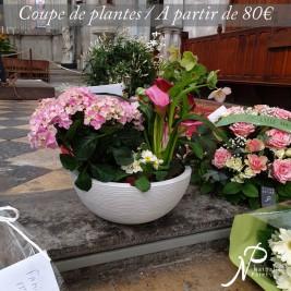 deuil-coupe-de-plantes-enterrement.jpg